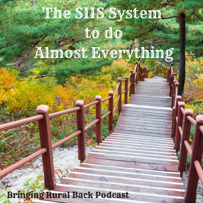 The SIIS System to do Almost Everything